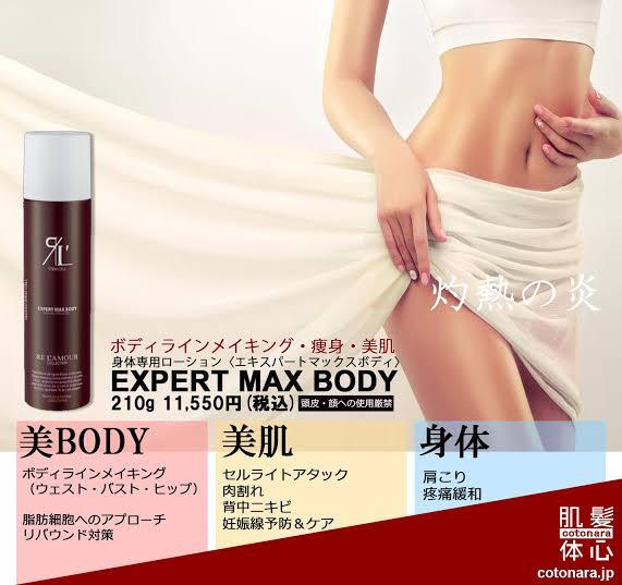 EXPART MAX BODY